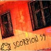 LECLAN-scorpion59