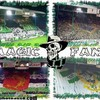 ASSE-is-magic-89