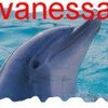 vanessdauphine39