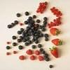 frui--rouge
