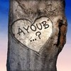 ayoub-bich