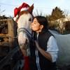 caballopie
