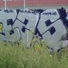 ReMs-e2s