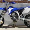 shone835