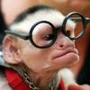 monkeyacademy