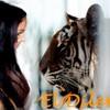 EL-DILEM63