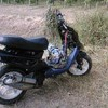 thescoots349