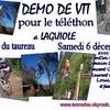 demo-vtt-teleton2008
