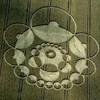 cropcircles61