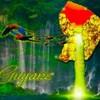 guyane973crew