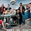 grey-ss-anatomy