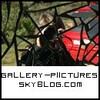 gallery-piictures
