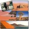 reve-de-Namibie