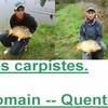 Les-carpistedu88