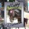 happy220