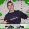 mec-star-walid