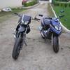 guigui29290