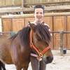 poneys14