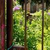 Jardin--s3cret--x3