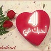 musulmane544