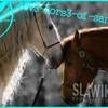 lov3-hors3-of-santana