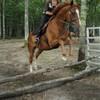equitation-95