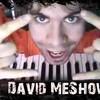 RobinDavid-Meshow