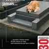 chien2du68120