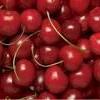 cherry-on