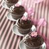 missa-cupcake