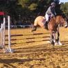 Materiel-Equitation13