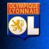lelyonnais37140