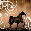 Cheval2107