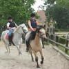 x-cheval-club-du-voulgis
