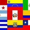 reggaeton-4-2-louse