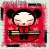 pucca-only