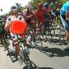 cyclisme-sondage09