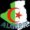 pure-algerien