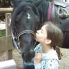lovelovelovehorses