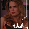 love-haley-love