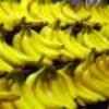 le-banana-mag