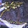 cynthiaforever015