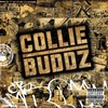 Collie-Buddz