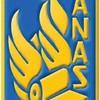 pawer-anas2008