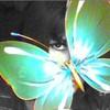 Yumiii-Sweet