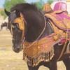Horsepassions01