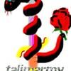 talimarmy