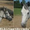 NikitaetNovadu71