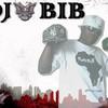 djbibhotmixshow