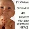 lacrevette62151